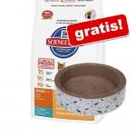8/10 kg Hill's torrfoder för katt + klösmöbel! - Adult Rabbit