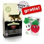 8 kg / 10 kg James Wellbeloved + Catnip Veggies kattleksaker på köpet! - Adult Oral Health Turkey (2 x 4 kg)