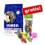 10/15 kg Iams torrfoder + set av kattleksaker - Pro Active Health Adult Multi-Cat Household (15 kg)