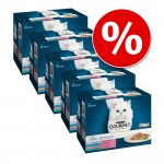 Ekonomipack: 60 x 85 g Gourmet Perle till sparpris! - Country Medley in Jelly