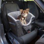 Bilstol för Hund