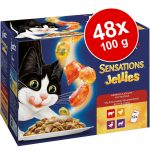 Ekonomipack: Latz Sensations Jellies 48 x 100 g - Köttvariationer
