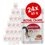 Ekonomipack: Royal Canin våtfoder 24 x 85 g - Urinary Care i sås