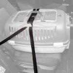 Säkerhetsbälte/spännband för transportburar - 1 set (2 st)