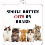 Spoilt Rotten Cats on Board - till bilen
