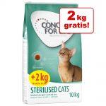 Concept for Life kattfoder i bonusbag - Maine Coon (10 + 2 kg)