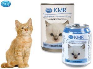 KMR mjölkersättning till kattunge