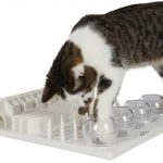 Cat Activity FunBoard (grå)