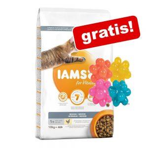 IAMS torrfoder 10 eller 15 kg +4 st noppbollar på köpet! Senior Chicken (10 kg)