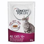 Concept for Life All Cats 10+ - i gelé - 24 x 85 g