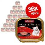Ekonomipack: Animonda vom Feinsten Kitten 36 x 100 g - Lammkött