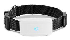 GPS för katt och hund mini