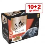 10 + 2 på köpet! 12 x 85 g Sheba våtfoder - Collection in Jelly