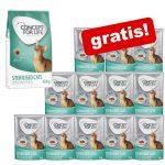 10kg / 9 kg Concept for Life torrfoder + 12 x 85 g våtfoder i sås på köpet! - All Cats (10 kg)