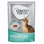 36 + 12 på köpet! Concept for Life våtfoder 48 x 85 g - All Cats i gelé