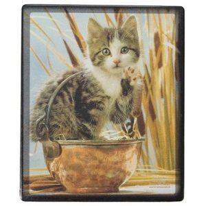 Musmatta Katten I Skålen