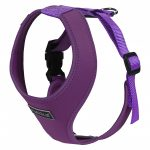 Rukka Comfort Mini Harness Violet