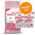 Blandat provpack: Royal Canin Kitten + 24 x 85 g våtfoder - British Shorthair Kitten (2 kg + 24 x 85 g våtfoder)
