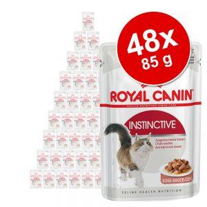 Ekonomipack: Royal Canin våtfoder 48 x 85 g - Sterilised i sås