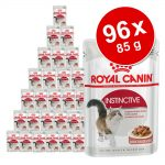 Ekonomipack: Royal Canin våtfoder 96 x 85 g - Instinctive i gelé