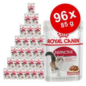 Ekonomipack: Royal Canin våtfoder 96 x 85 g - Urinary Care i sås