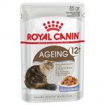 Royal Canin Ageing +12 i gelé - 48 x 85 g