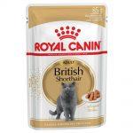 Royal Canin Breed British Shorthair - 24 x 85 g