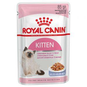 Royal Canin Kitten Instinctive i gelé - 48 x 85 g