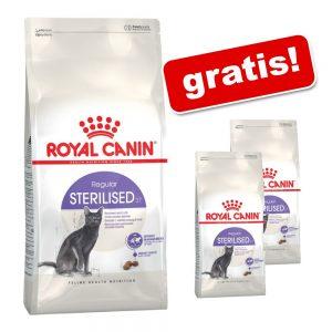 10 kg + 2 x 400 g på köpet! 10,8 kg Royal Canin torrfoder för katt Regular Sensible 33