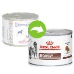 Royal Canin Veterinary Diet Feline Recovery - Ekonomipack: 48 x 195 g