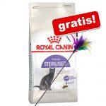 10 kg Royal Canin + fjädervippa på köpet! - Intense Hairball Care