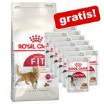 10 kg Royal Canin torrfoder + 12 x 85 g våtfoder på köpet! - Outdoor 30 + Instinctive Mousse