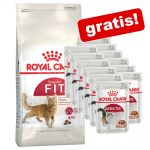 10 kg Royal Canin torrfoder + 12 x 85 g våtfoder på köpet! - Protein Exigent + Instinctive i gelé
