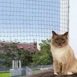 Kattnät, 8 ž 3 m, transparent (M)
