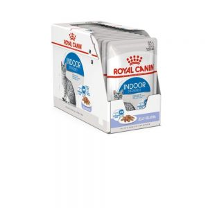 Royal Canin Indoor in Jelly Adult