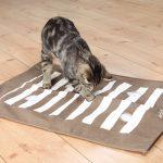 Trixie Cat Aktivitetsmatta