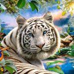 Pussel tiger Twilight , 1500 bitar
