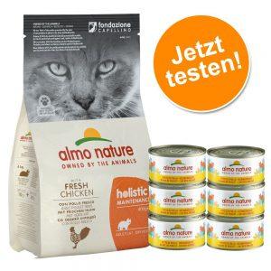 Blandade provpack: Almo Nature torr- och våtfoder - 2 kg Holistic Oily Fish & Rice + 6 x 70 g Legend Tonfisk & babysardiner