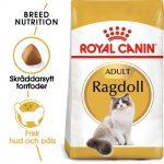 Royal Canin Ragdoll - 2 kg