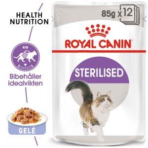 Royal Canin Sterilised i gelé - 24 x 85 g