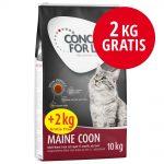 10 + 2 på köpet! Concept for Life kattfoder Kitten (10 + 2 kg)