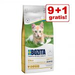 9 + 1 på köpet! 10 kg Bozita Feline kattfoder - Diet & Stomach Älg Grainfree
