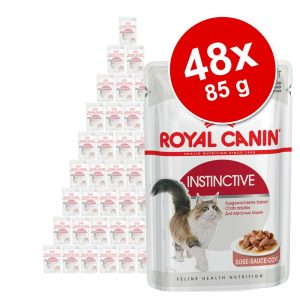 Ekonomipack: Royal Canin våtfoder 48 x 85 g - Blandpack Intense Beauty: 24 x 85 g sås + 24 x 85 g gelé