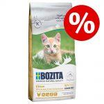 Prova-på-pris! Testa 400 g Bozita torrfoder för katt - Outdoor & Active