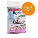 Prova till lågt pris! 6 kg Tigerino Canada kattströ - Babypuderdoft 6 kg (ca 14 l)