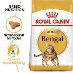 Royal Canin Bengal - Ekonomipack: 2 x 10 kg