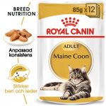 Royal Canin Breed Maine Coon - 24 x 85 g