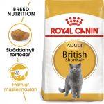 Royal Canin British Shorthair Adult - 10 kg