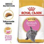 Royal Canin British Shorthair Kitten - 2 kg
