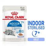 Royal Canin Indoor Sterilised 7+ gelé - 96 x 85 g